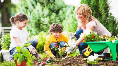 How to stay active & healthy in garden during lockdown?